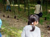 2009-04-18 たけのこ掘り