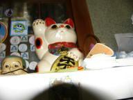 ぷにぷに作品・招き猫