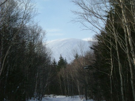 林道から見上げた樽前山