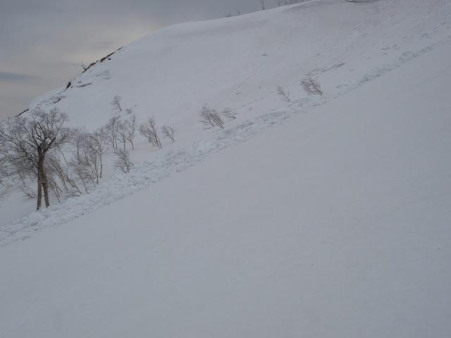 昆布岳山頂直下デブリ末端