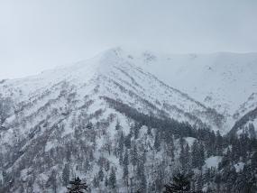 下山後の富良野北尾根-1
