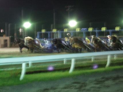 ばんえい競馬7-1