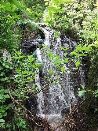 本流の滝1-1