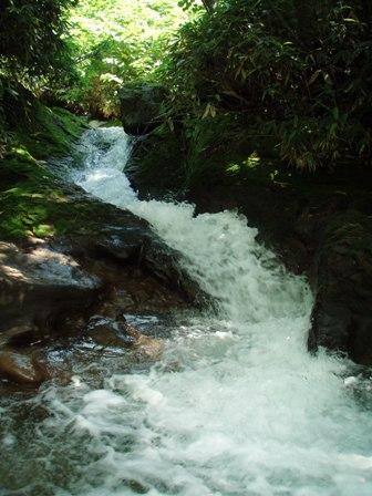 ニセコアンベツ川の流れ