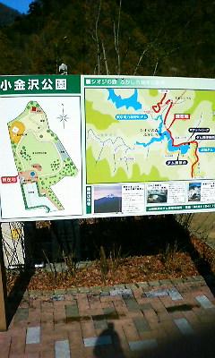 小金沢公園001