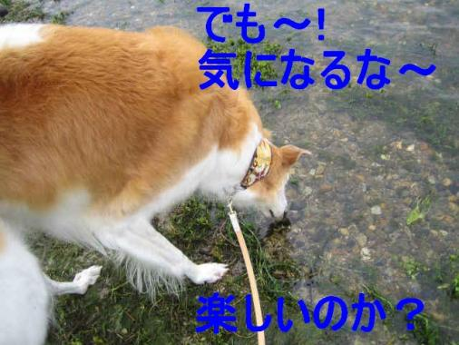 IMG_2952.jpg