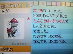 P1000451_convert_20090712000157.jpg