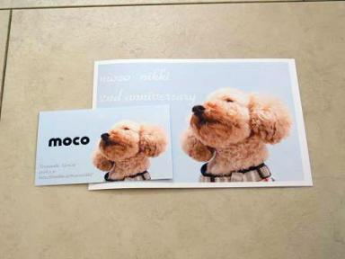 「moco日記」2周年記念プレ企画に当選