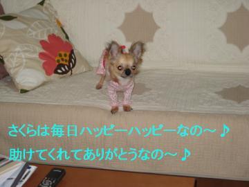 IMG_2196ブログ用