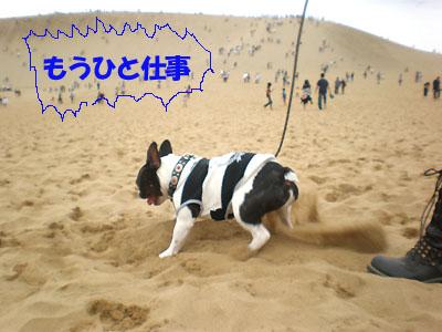 掘ります掘ります!!