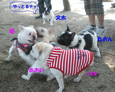 遊び大好き組ロックオン!!