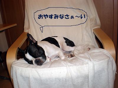 おやすみんこ