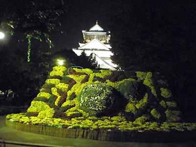 菊と大阪城