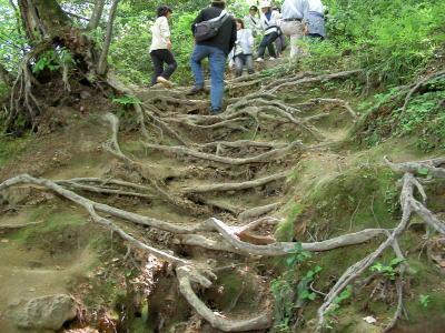 三徳山三佛寺-かずら坂