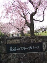 2007_041001.jpg