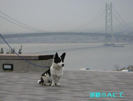 20061103201116.jpg