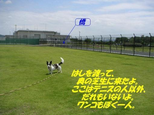 20070620100442.jpg