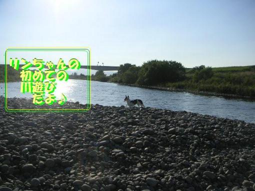 20070812222659.jpg