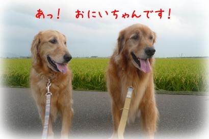 819お散歩2