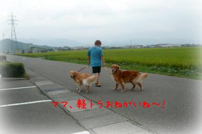 819お散歩4