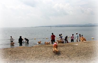 820琵琶湖2