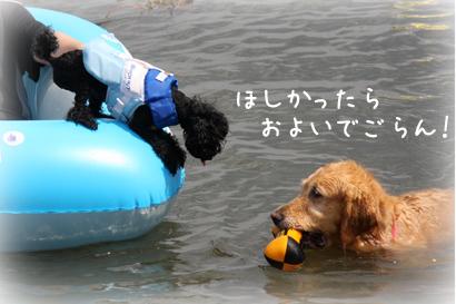 822琵琶湖19