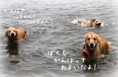 822琵琶湖5