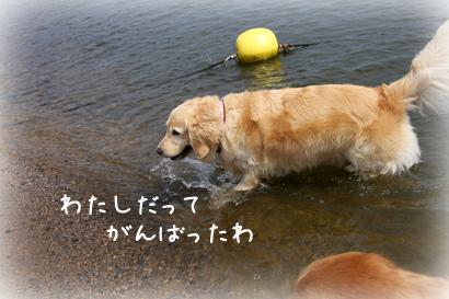 822琵琶湖6