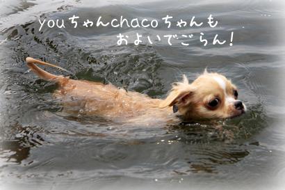 822琵琶湖10
