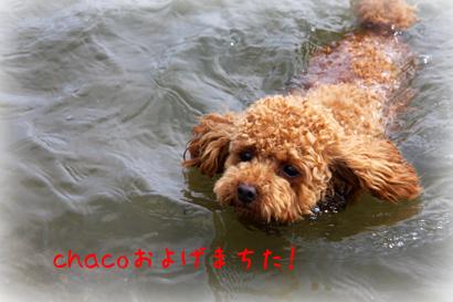 822琵琶湖14