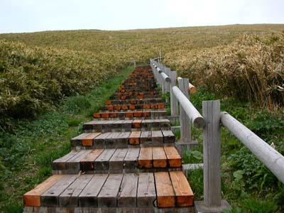 かむいみさきの階段