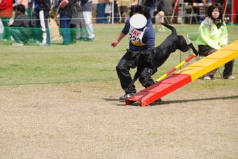 2007.3.21kochi1.jpg
