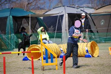 2007.3.21kochi2.jpg