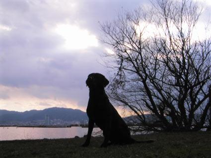 2007.3biwako1.jpg