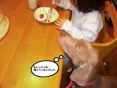食べたい。。