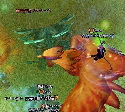 2009-01-24 22-51 パサホース♪