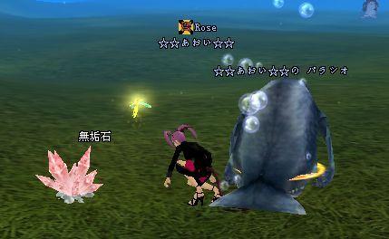 2009-02-20 23-47 無垢石♪