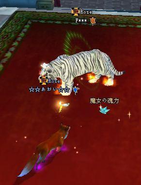 2009-03-10 00-36 魔女魂♪