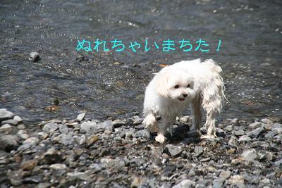 IMG_5650川7