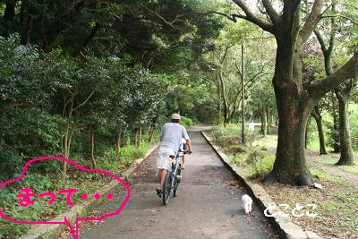 IMG_5994自転車8