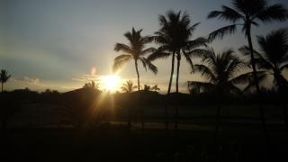 朝日 ハワイ島