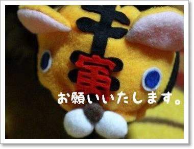 osyougatu2.jpg