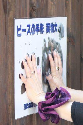 ピースの手形1