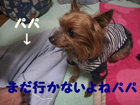 コピー ~ 2009.3.9to 073