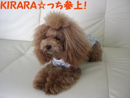KIRARA☆っち