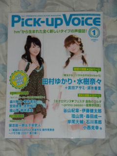 Pich1_1.jpg