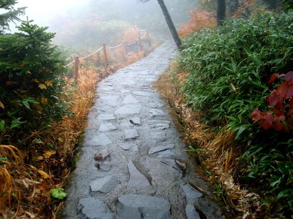 PA100017.JPG登山道.jpg
