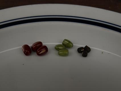 5小豆比較