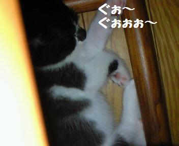カイト_081021_1