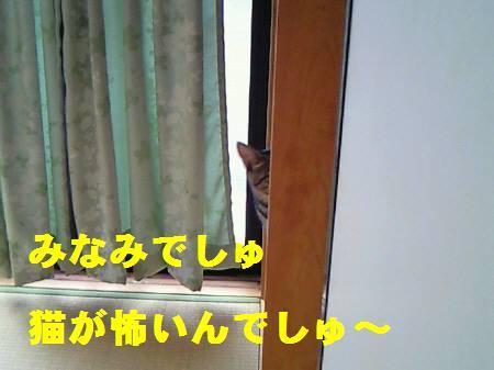みなみ_ 081107a